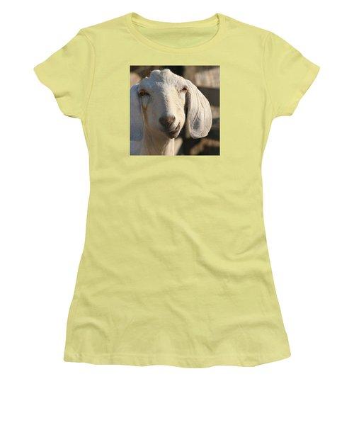 Goofy Goat Women's T-Shirt (Junior Cut) by Art Block Collections