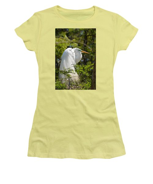 Women's T-Shirt (Junior Cut) featuring the photograph Great White Egret On Nest by Judith Morris