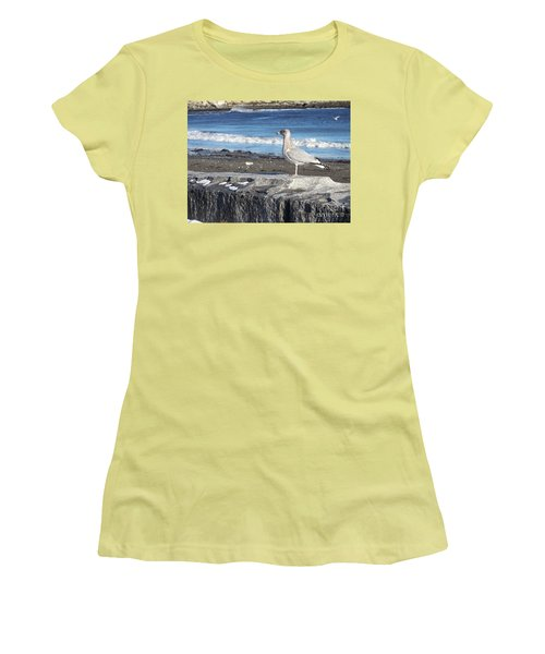 Women's T-Shirt (Junior Cut) featuring the photograph Seagull  by Eunice Miller