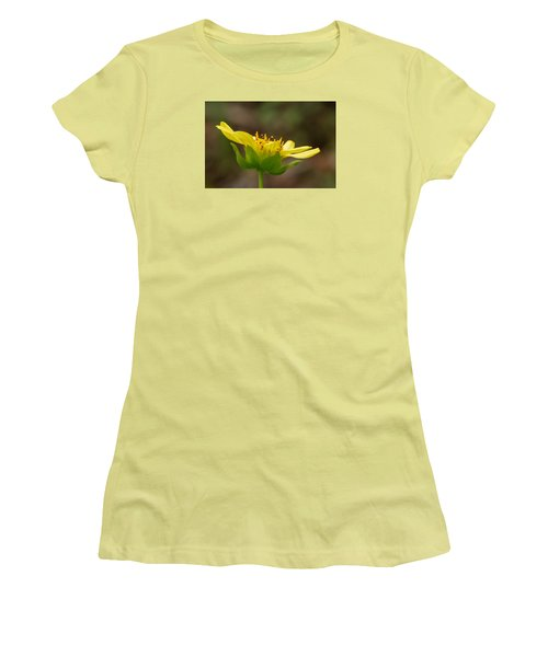 Women's T-Shirt (Junior Cut) featuring the photograph Hairy Leafcup by Paul Rebmann
