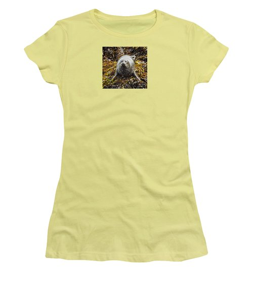 Harbor Seal Women's T-Shirt (Athletic Fit)
