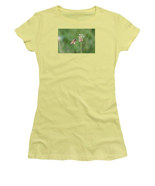 Honeybee And English Plantain Women's T-Shirt (Junior Cut) by Lucinda VanVleck