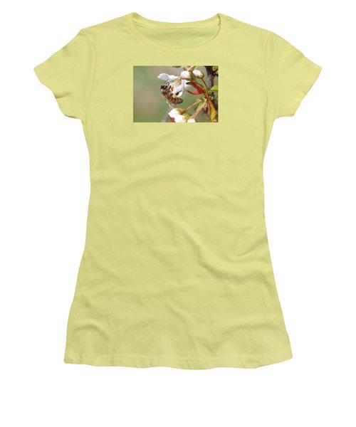 Honeybee On Cherry Blossom Women's T-Shirt (Junior Cut) by Lucinda VanVleck