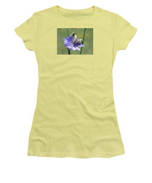 honeybee on Chickory Women's T-Shirt (Junior Cut) by Lucinda VanVleck