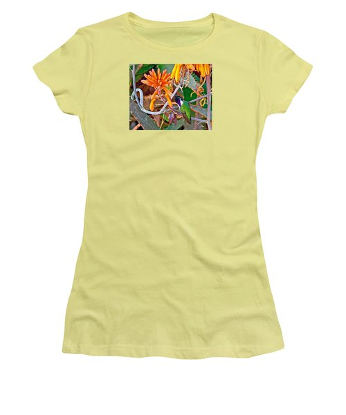 Hummingbird On Aloe In Living Desert In Palm Desert-california Women's T-Shirt (Athletic Fit)