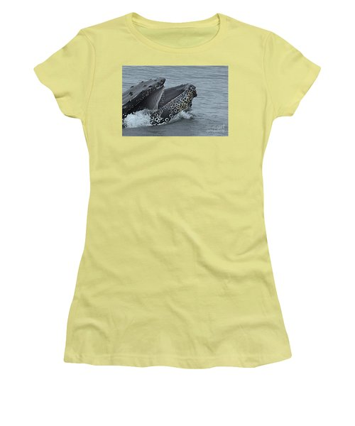 Women's T-Shirt (Junior Cut) featuring the photograph Humpback Whale  Lunge Feeding 2013 In Monterey Bay by California Views Mr Pat Hathaway Archives