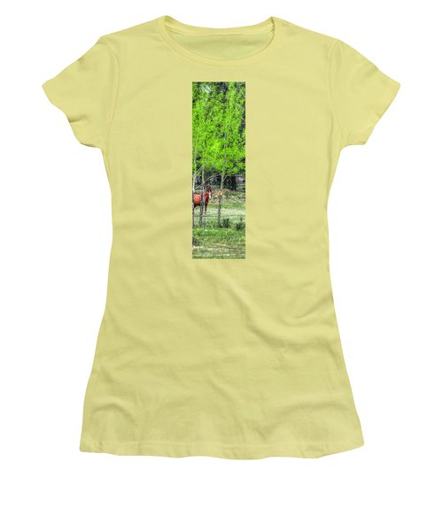 I See You 6172 Women's T-Shirt (Junior Cut) by Jerry Sodorff