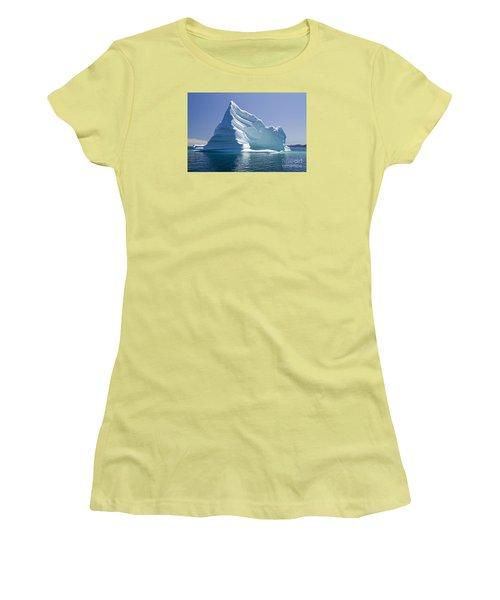 Iceberg Women's T-Shirt (Junior Cut) by Liz Leyden