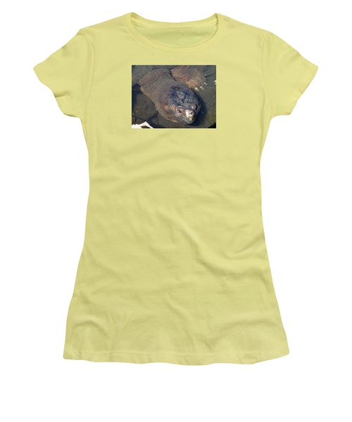 Island Turtle Women's T-Shirt (Athletic Fit)