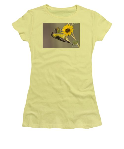 Lesser Goldfinch On Sunflower Women's T-Shirt (Athletic Fit)
