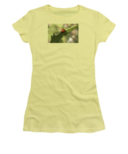 Lovely Lady Bug Women's T-Shirt (Junior Cut) by Shelly Gunderson