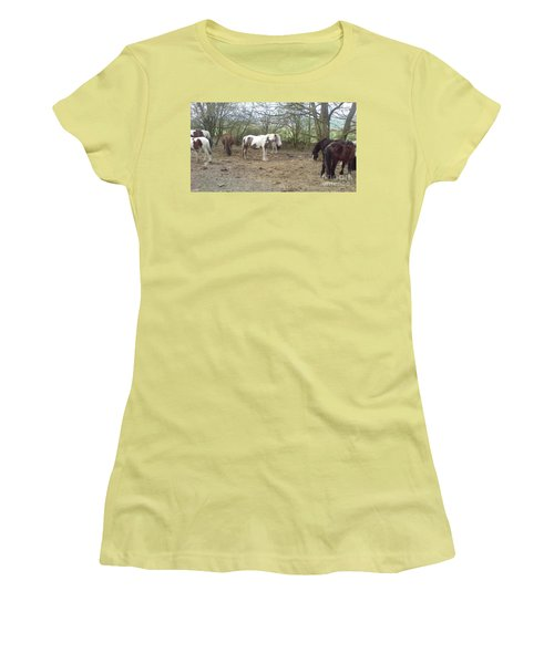 May Hill Ponies 1 Women's T-Shirt (Junior Cut) by John Williams