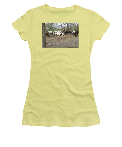 May Hill Ponies 2 Women's T-Shirt (Junior Cut) by John Williams