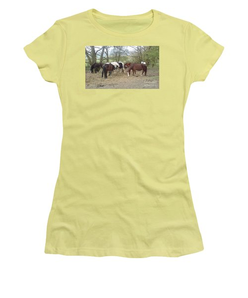 May Hill Ponies 3 Women's T-Shirt (Junior Cut) by John Williams