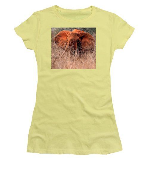 My Elephant In Africa Women's T-Shirt (Junior Cut) by Phyllis Kaltenbach