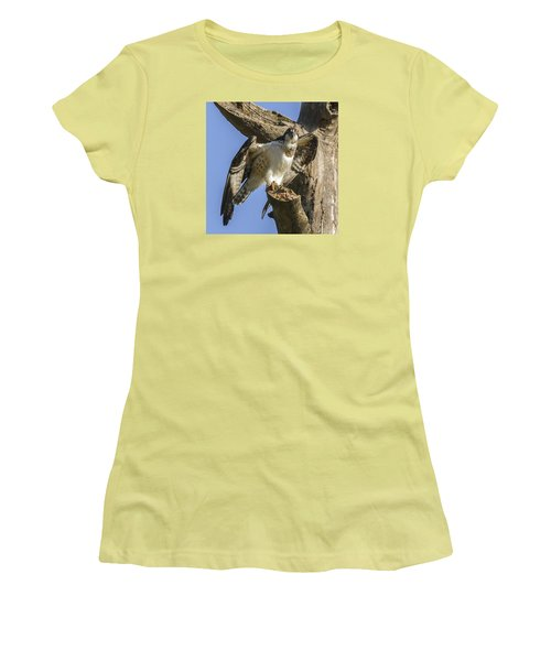 Women's T-Shirt (Junior Cut) featuring the photograph Osprey Pose by David Lester