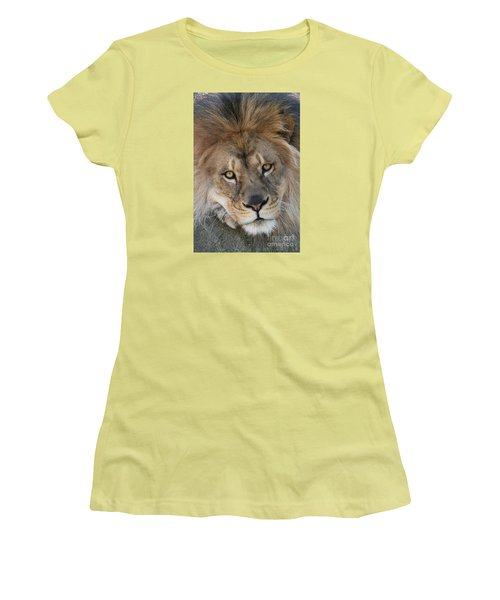 Pet Me Women's T-Shirt (Junior Cut) by Judy Whitton