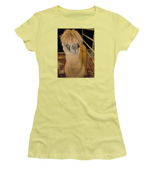 Portrait Of An Alpaca Women's T-Shirt (Junior Cut) by Connie Fox