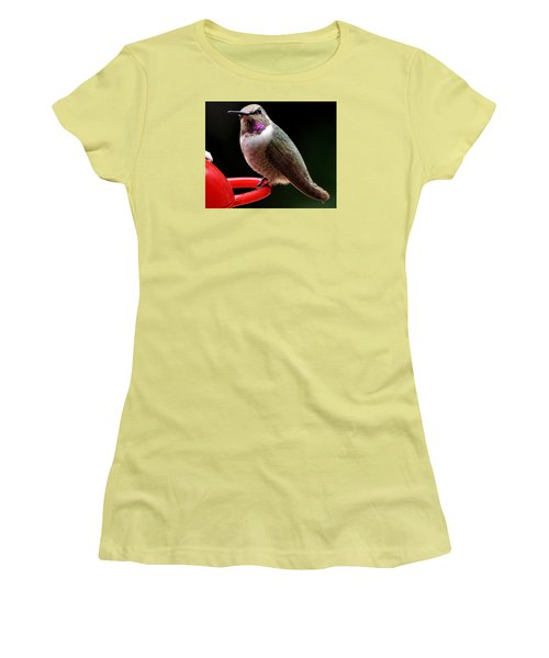 Women's T-Shirt (Junior Cut) featuring the photograph Pregnant Female Caliope With Purple Throat by Jay Milo