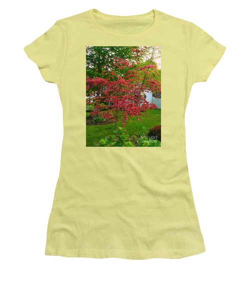 Women's T-Shirt (Junior Cut) featuring the photograph Pretty Pink Beech Tree by Becky Lupe
