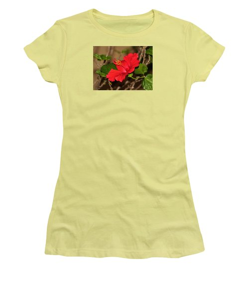 Red Hibiscus Flower Women's T-Shirt (Athletic Fit)