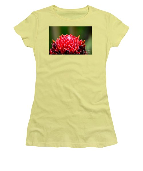 Red Torch Ginger Flower Head From Tropics Singapore Women's T-Shirt (Junior Cut) by Imran Ahmed