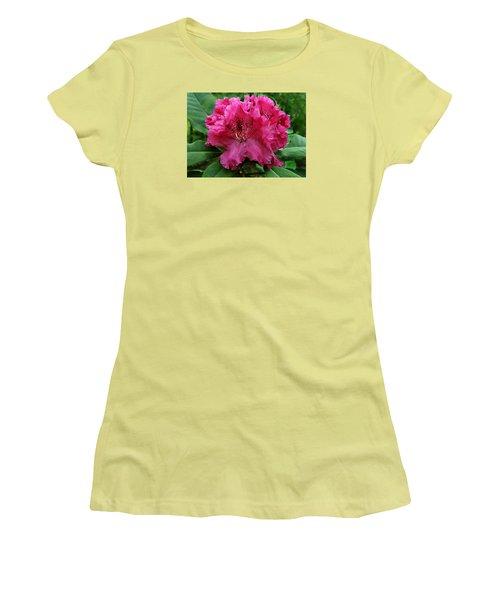 Rhododendron ' Bessie Howells ' Women's T-Shirt (Junior Cut) by William Tanneberger