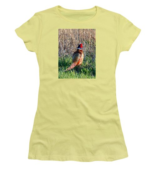 Ring-necked Pheasant Women's T-Shirt (Athletic Fit)