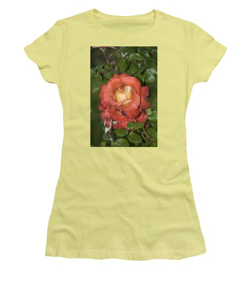 Rose 6 Women's T-Shirt (Junior Cut) by Andy Shomock