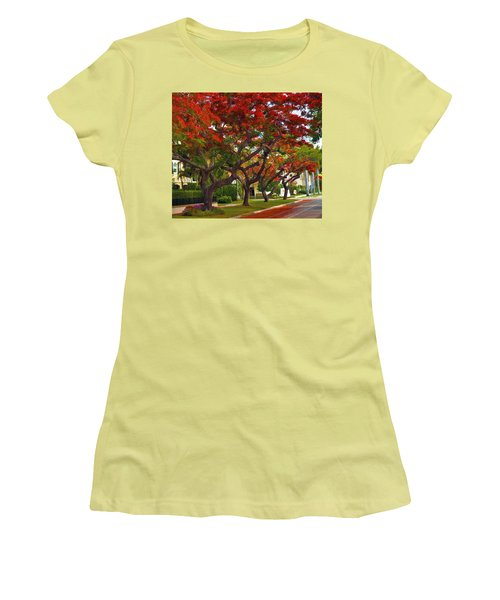 Royal Poinciana Trees In Blooming In South Florida Women's T-Shirt (Athletic Fit)