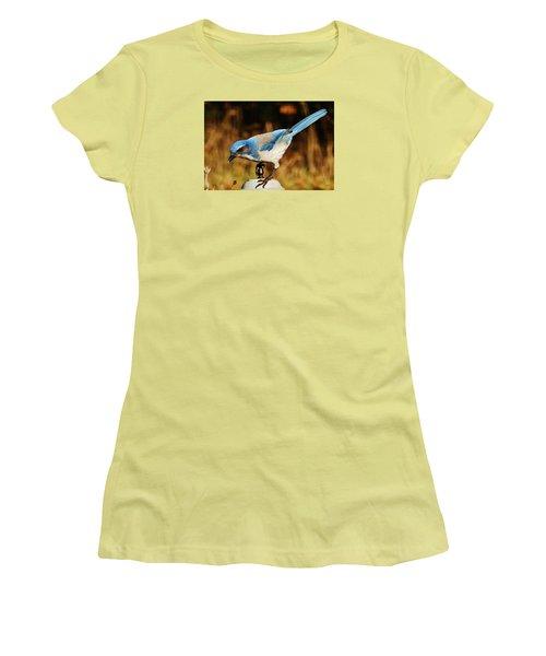 Scrub Jay Women's T-Shirt (Junior Cut) by VLee Watson