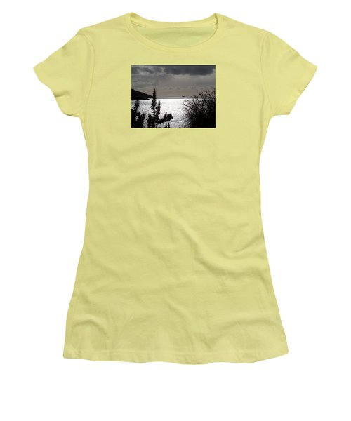 Silver Women's T-Shirt (Junior Cut) by Richard Brookes