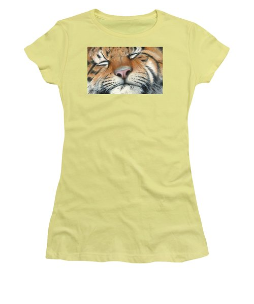 Women's T-Shirt (Junior Cut) featuring the painting Sleeping Beauty by Mike Brown