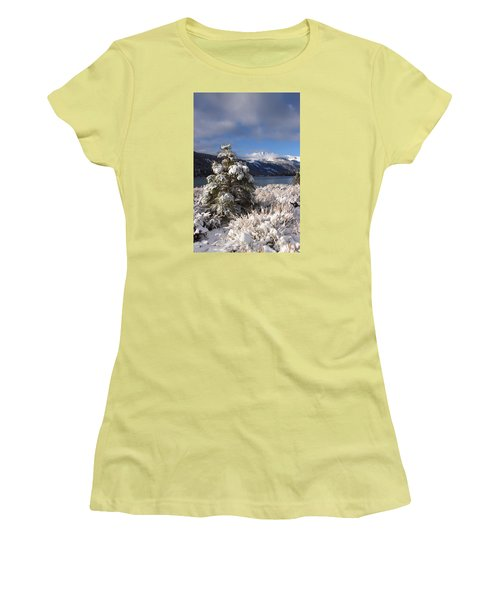 Women's T-Shirt (Junior Cut) featuring the photograph Snowy Pine  by Duncan Selby