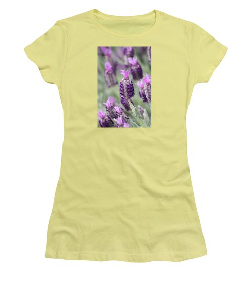 Spanish Breeze Women's T-Shirt (Junior Cut) by Amy Gallagher