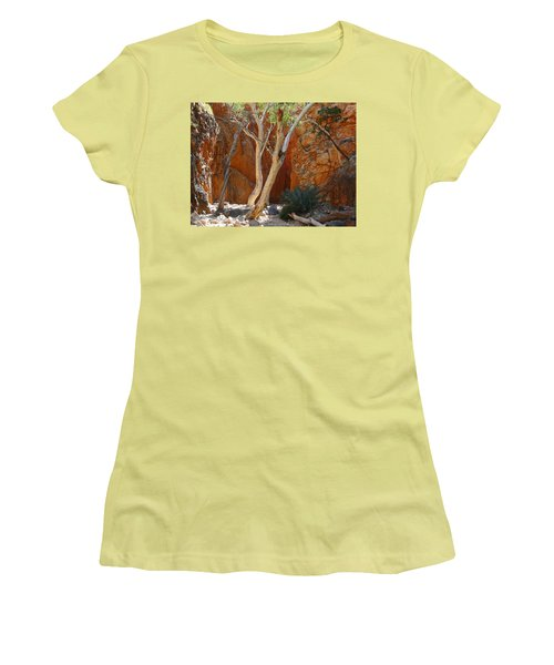 Standley Chasm Women's T-Shirt (Junior Cut) by Evelyn Tambour