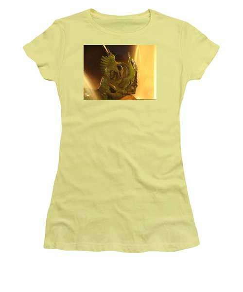 Women's T-Shirt (Junior Cut) featuring the photograph Swann Fountain by Christopher Woods