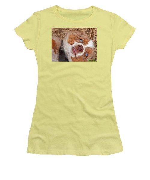 Women's T-Shirt (Junior Cut) featuring the photograph Sweet Australian Shepherd Puppy Face Art Prints by Valerie Garner