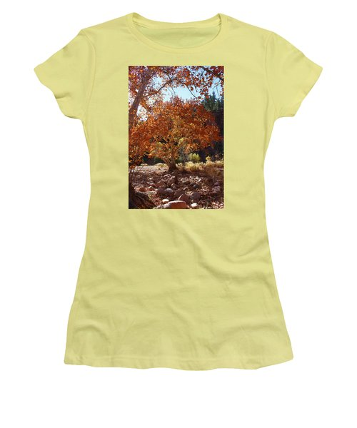 Sycamore Trees Fall Colors Women's T-Shirt (Junior Cut) by Tom Janca