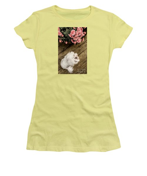 Havanese Puppy Women's T-Shirt (Athletic Fit)