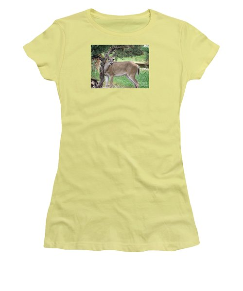 Women's T-Shirt (Junior Cut) featuring the photograph Texas Beauty - White Tail Doe by Ella Kaye Dickey