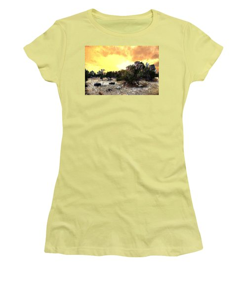 Texas Hill Country Women's T-Shirt (Athletic Fit)