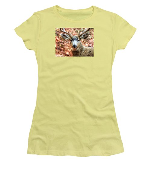 Women's T-Shirt (Junior Cut) featuring the photograph The Buck I by Lanita Williams