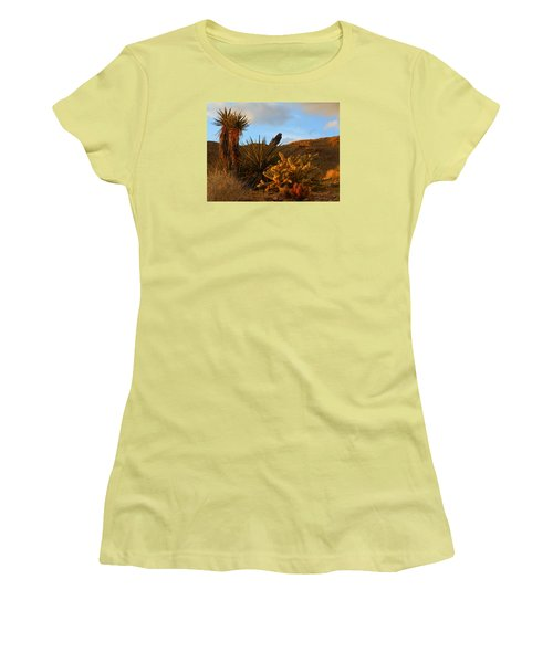The Living Desert In Winter Women's T-Shirt (Athletic Fit)