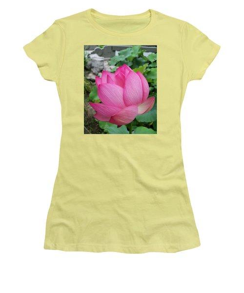 Tranquil Lotus  Women's T-Shirt (Junior Cut) by Lingfai Leung