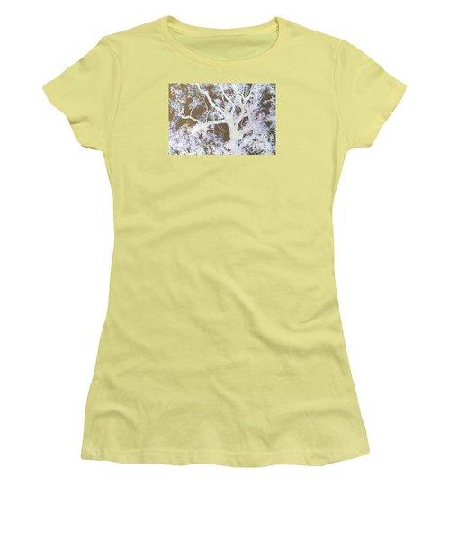 Women's T-Shirt (Junior Cut) featuring the photograph Tree Inversion by Cassandra Buckley