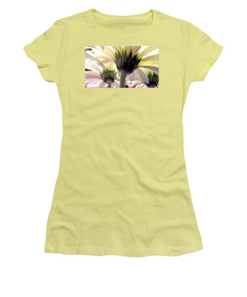 Tribute To Daisies Women's T-Shirt (Junior Cut) by Danielle  Parent