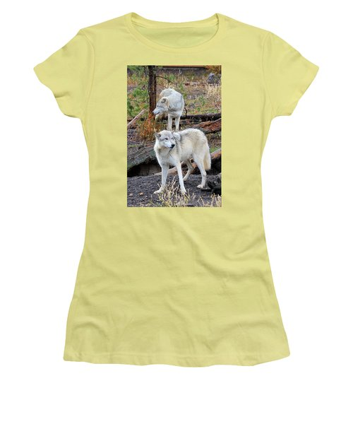 Women's T-Shirt (Junior Cut) featuring the photograph Twin Wolves by Athena Mckinzie
