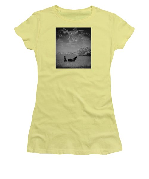 Two Horses Women's T-Shirt (Junior Cut)