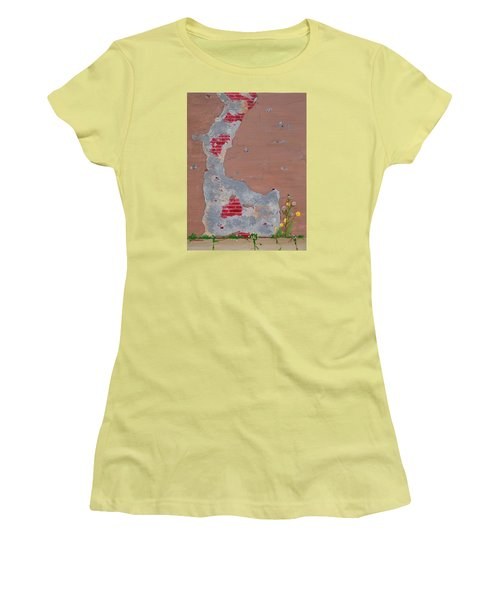 Unmasking The Red Brick Wall Women's T-Shirt (Athletic Fit)